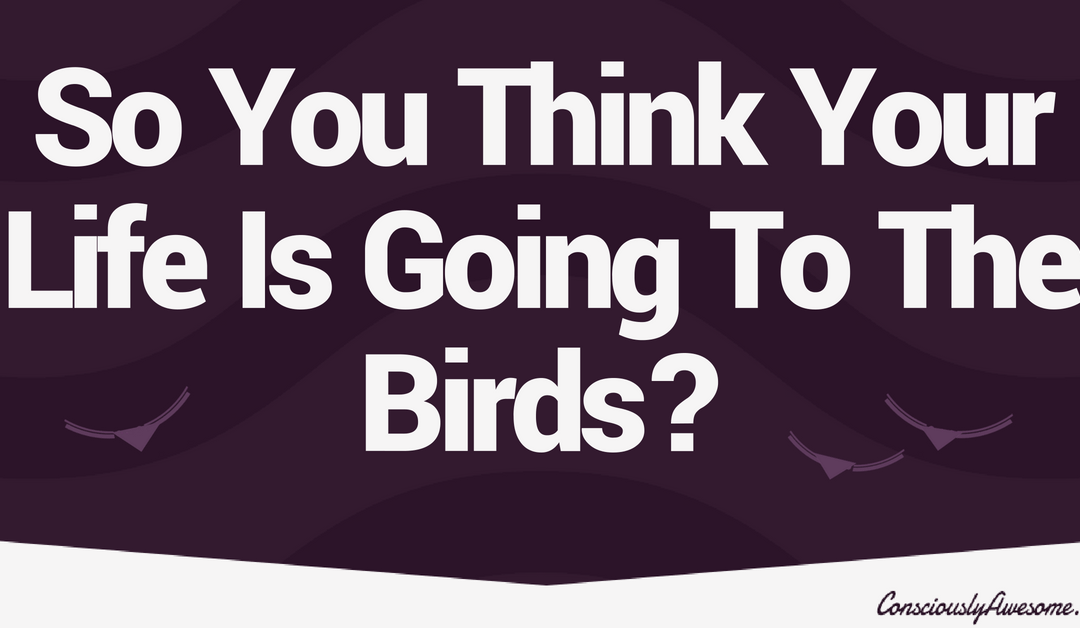 So You Think Your Life Is Going To The Birds?